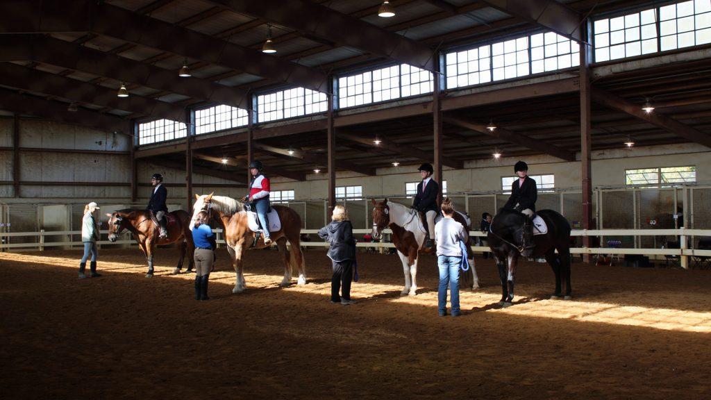 TRAV Horse Show 2019